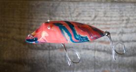 Inoshish