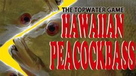 HAWAIIAN PEACOCKBASS