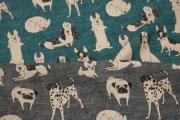 dogs/yuwa
