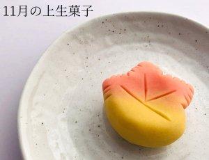 上生菓子 11月