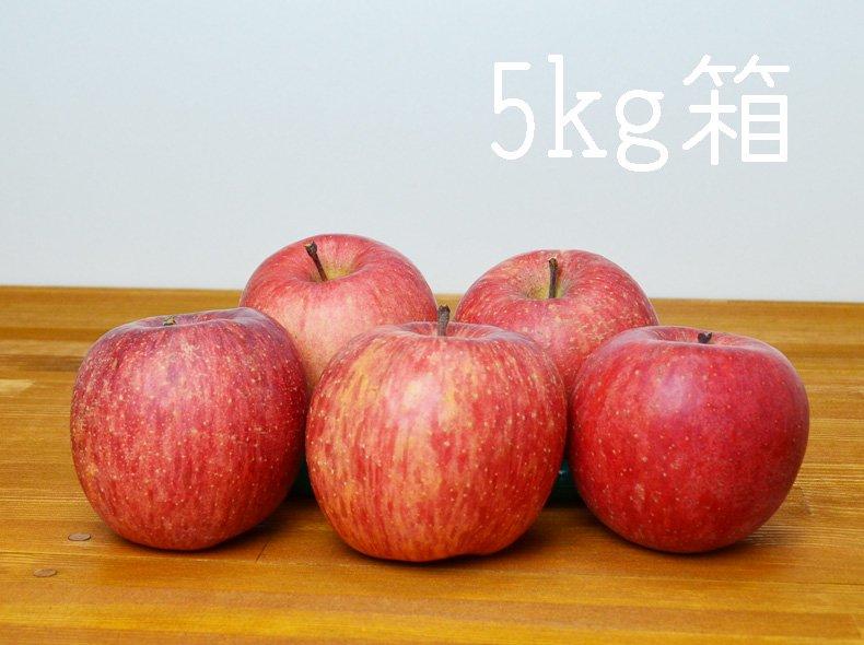 [りんごの王様] 信州産完熟サンふじ