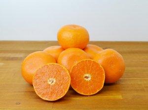 [高級柑橘][佐賀県産] せとかみかん