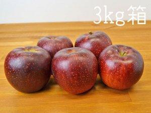 [りんご王国信州産] 秋映りんご3kg箱