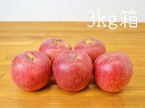 [りんご王国信州産] シナノスイート 3kg箱