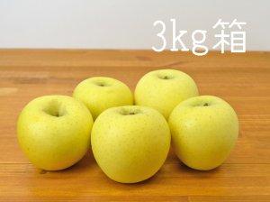 [りんご王国信州産] シナノゴールド 3kg箱