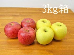 [りんご王国信州産] シナノスイート&シナノゴールド3kg箱