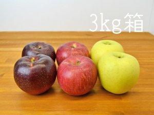 [りんご三兄弟] シナノスイート&シナノゴールド&秋映りんご3kg箱