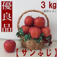 りんご【サンふじ】優良品 3kg(約9ヶ入) 送料無料