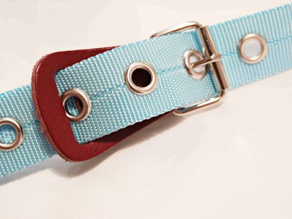 BELT NYLON 【SAX】 / necessary or unnecessary