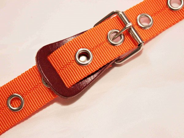 BELT NYLON 【ORANGE】 / necessary or unnecessary
