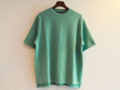COTTON THERMAL S/S KNIT 【MINT】 / RoToTo<img class='new_mark_img2' src='https://img.shop-pro.jp/img/new/icons1.gif' style='border:none;display:inline;margin:0px;padding:0px;width:auto;' />