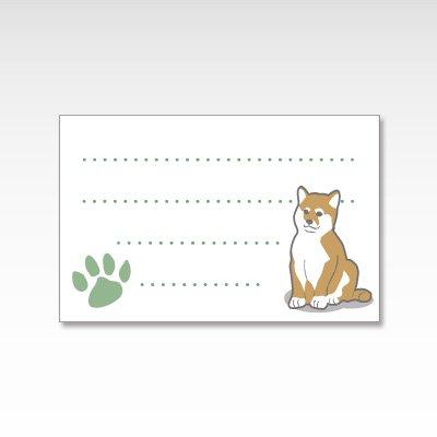 柴犬/メッセージカード 10枚入