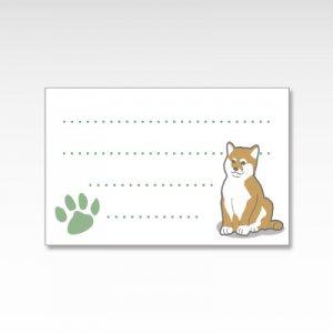 柴犬/メッセージカード 10枚