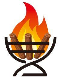 薪の販売・カシ、ナラ、その他薪ストーブ用薪情報満載 堅木屋 京都・滋賀近県配達できます