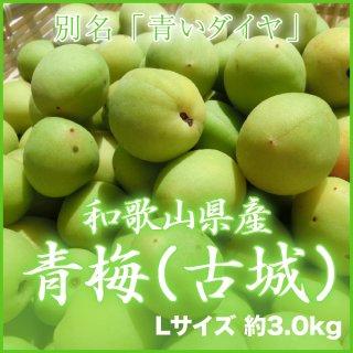 JA紀南 和歌山県産 青梅 秀品 L 3kg 【調理レシピ付き】