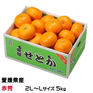 せとか  ◯等級 4L〜3Lサイズ 約5kg 愛媛県産  JAえひめ中央 中島選果場  送料無料  みかん