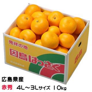 八朔 はっさく  赤秀 4L〜3Lサイズ 約10kg  広島県産 JA尾道市 因島選果場 送料無料 はっさく ハッサク みかん
