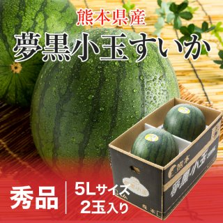 夢黒小玉すいか 熊本県産 JA鹿本 秀品 5Lサイズ 2玉 約7.0kg 送料無料 お中元 スイカ 西瓜