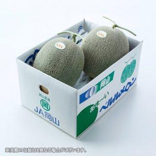 【6月中旬より発送】<br>ペルルメロン 岡山県産 JAおかやま 5Lサイズ 2玉 約5kg 送料無料