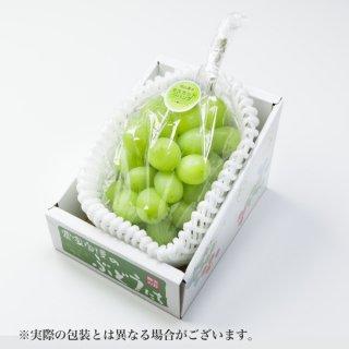 ぶどう マスカットジパング 青秀 約600g×1房 岡山県産 JAおかやま ぶどう 葡萄 ブドウ
