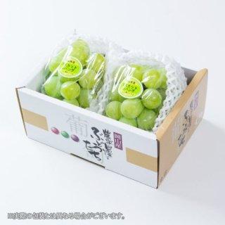 ぶどう マスカットジパング 青秀 約500g×2房 岡山県産 JAおかやま ぶどう 葡萄 ブドウ