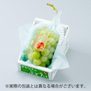 ぶどう マスカットジパング 赤秀 約800g×1房 岡山県産 JAおかやま ぶどう 葡萄 ブドウ