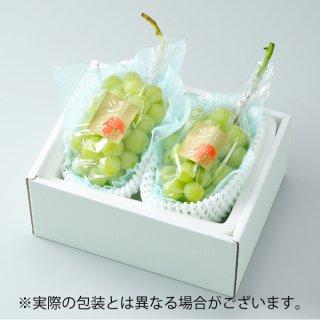 ぶどう マスカットジパング 赤秀 約600g×2房 岡山県産 JAおかやま ぶどう 葡萄 ブドウ