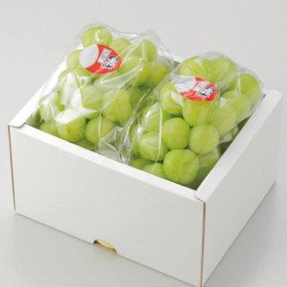 ぶどう 桃太郎ぶどう 青秀 約600g×2房 岡山県産 香川県産 夏ギフト 葡萄 ブドウ