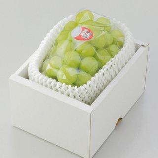ぶどう 桃太郎ぶどう 青秀 約1000g×1房 岡山県産 香川県産 夏ギフト 葡萄 ブドウ
