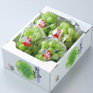ぶどう 桃太郎ぶどう 赤秀 3〜5房 約2kg 岡山県産 香川県産 夏ギフト 葡萄 ブドウ