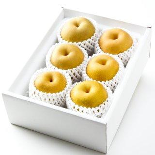 あきづき 赤秀 5~9玉 2kg 鳥取県産