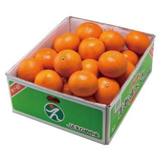 みかん あまくさ 天草 紅まどんなの親品種 青秀 2L〜Sサイズ 5kg JAえひめ中央 中島産 蜜柑 ミカン
