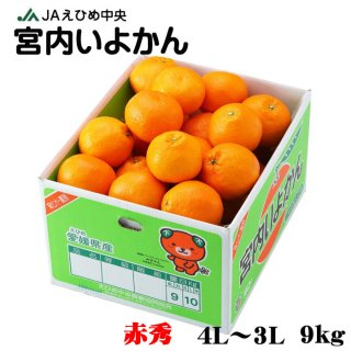 みかん 宮内伊予甘 赤秀 4L~3Lサイズ 9kg JAえひめ中央 中島産 ミカン 蜜柑 いよかん