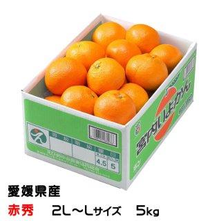 みかん 宮内伊予甘 赤秀 2L〜Lサイズ 5kg JAえひめ中央 中島産 ミカン 蜜柑 いよかん