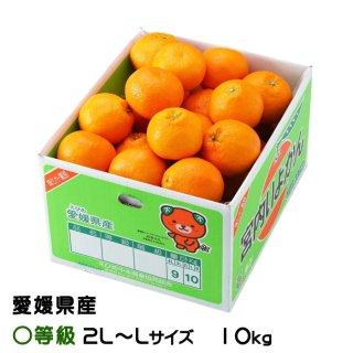 みかん 宮内伊予甘 〇等級 2L〜Lサイズ 10kg JAえひめ中央 中島産 ミカン 蜜柑 いよかん