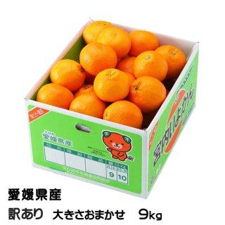 みかん 宮内伊予甘 風のいたずら 訳あり 大きさおまかせ 9kg JAえひめ中央 中島産 ミカン 蜜柑 いよかん