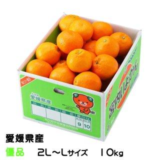 みかん 宮内伊予甘 優品 2L〜Lサイズ 10kg JAえひめ中央 中島産 ミカン 蜜柑 いよかん