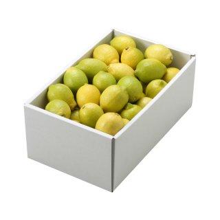 レモン 倉敷レモン 青秀 S〜2S 2.5kg 岡山県 倉敷産  れもん 檸檬