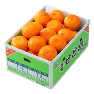 みかん せとか 風のいたずら 訳あり 大きさおまかせ 5kg愛媛県 中島産  ミカン 蜜柑 ギフト 贈り物
