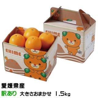 みかん タロッコオレンジ ブラッドオレンジ 風のいたずら 訳あり 大きさおまかせ 2kg みきゃん箱入り 愛媛県 中島産  ミカン 蜜柑