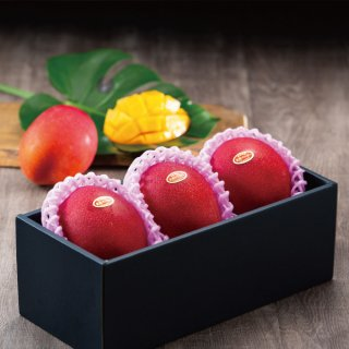 マンゴー みやざき完熟マンゴー 赤秀 3Lサイズ 450g以上×3玉 宮崎県産 JA宮崎経済連 【4月20日より順次発送】
