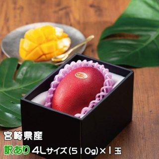 マンゴー みやざき完熟マンゴー 風のいたずら 訳あり 4Lサイズ×1玉 宮崎県産 【4月20日より順次発送】