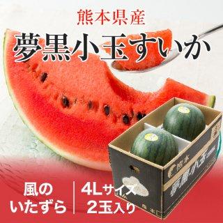 夢黒小玉すいか 熊本県産 JA鹿本 風のいたずら ちょっと訳あり 4Lサイズ 2玉 約6.0kg 送料無料 お中元 スイカ 西瓜