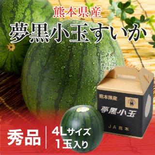 夢黒小玉すいか 熊本県産 JA鹿本 秀品 4Lサイズ 1玉 約3.0kg 送料無料 お中元 スイカ 西瓜