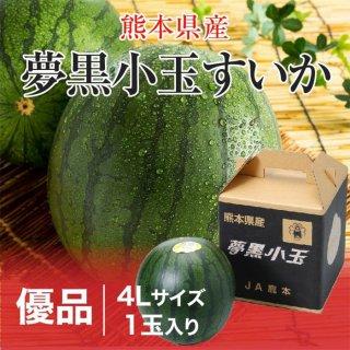 夢黒小玉すいか 熊本県産 JA鹿本 優品 4Lサイズ 1玉 約3.0kg 送料無料 お中元 スイカ 西瓜