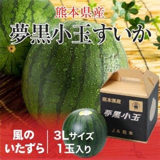 夢黒小玉すいか 熊本県産 JA鹿本 風のいたずら ちょっと訳あり 3Lサイズ 1玉 約2.5kg 送料無料 お中元 スイカ 西瓜