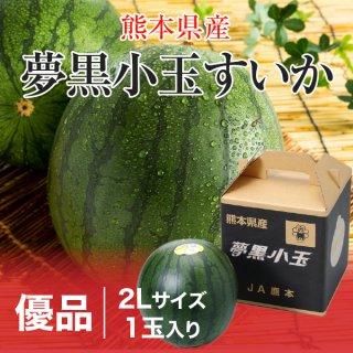 夢黒小玉すいか 熊本県産 JA鹿本 優品 2Lサイズ 1玉 約1.8kg 送料無料 お中元 スイカ 西瓜