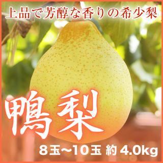鴨梨(ヤーリー) 8玉〜10玉(約4kg)