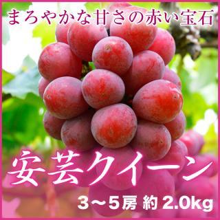 安芸クイーン 3〜5房 約2.0kg