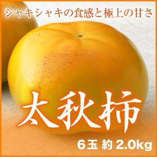 太秋柿 6玉 約2.0kg